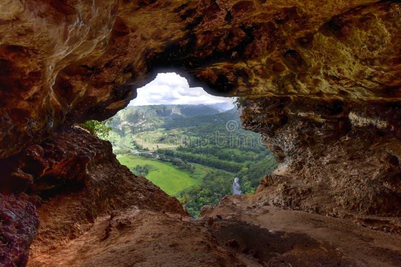 Fönstergrotta - Puerto Rico arkivfoton