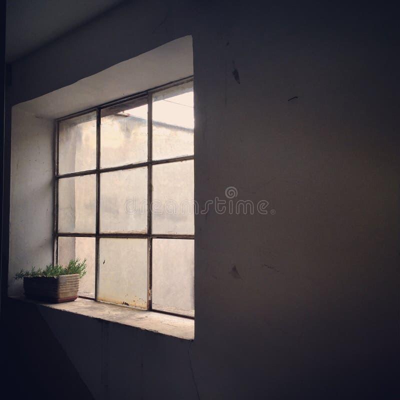 Fönstret arkivfoto