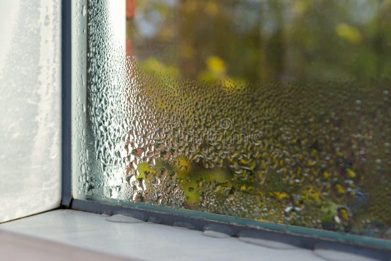Fönstret med vatten tappar closeupen, inre selektiv fokus fotografering för bildbyråer