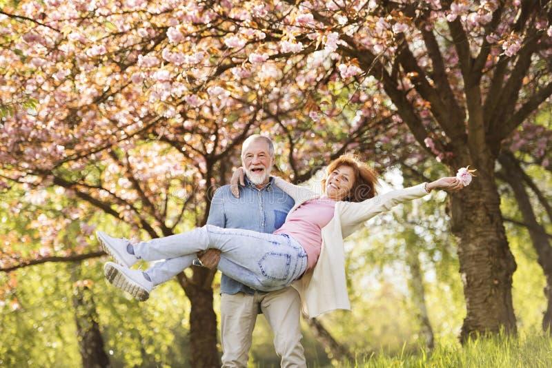 Förälskad yttersida för höga par i vårnatur arkivbilder