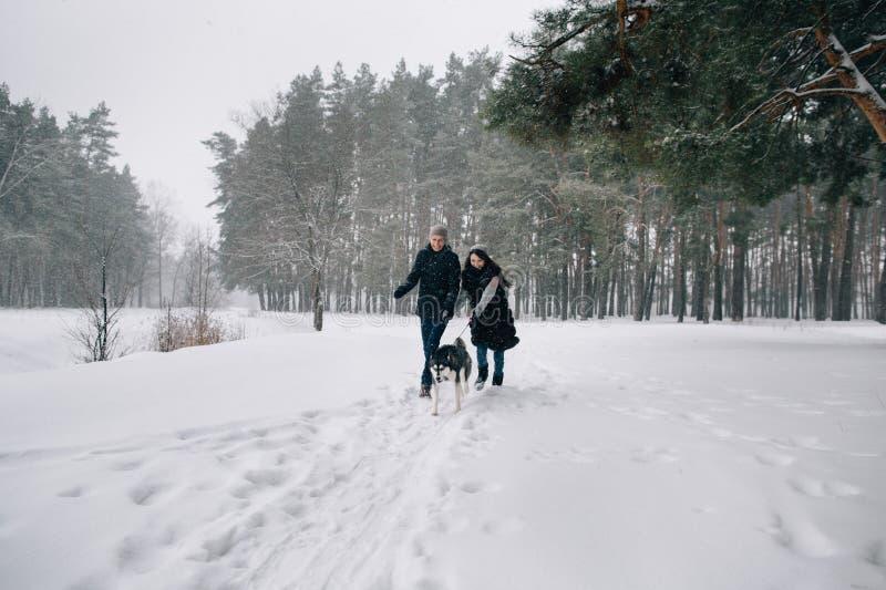 Förälskade par har gyckel med den skrovliga hunden royaltyfria foton