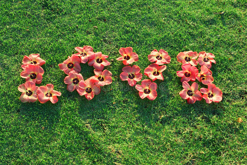 förälskelse för blommagräsgreen royaltyfri foto
