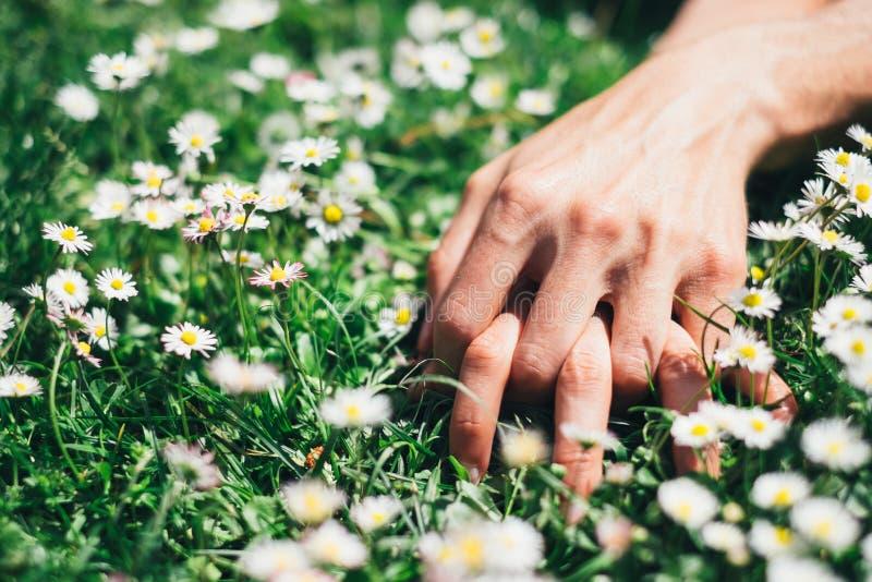 Förälskelse- och passionhänder på vårblommor arkivfoto