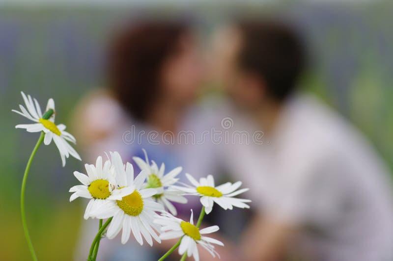 förälskelsebröllop royaltyfri bild