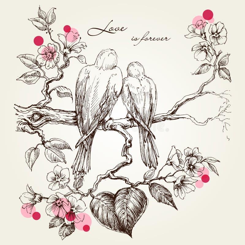 Förälskelsefåglar på Tree förgrena sig stock illustrationer