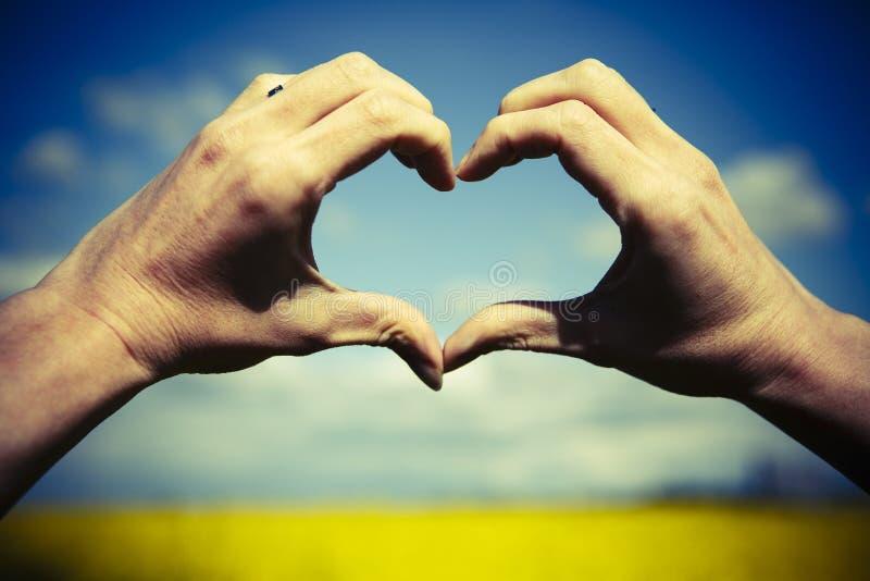 Förälskelseformhänder - hjärta på gult fält och blå himmel royaltyfri fotografi