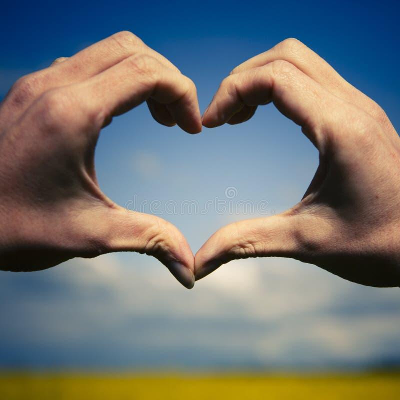 Förälskelseformhänder - hjärta på gult fält och blå himmel arkivbilder