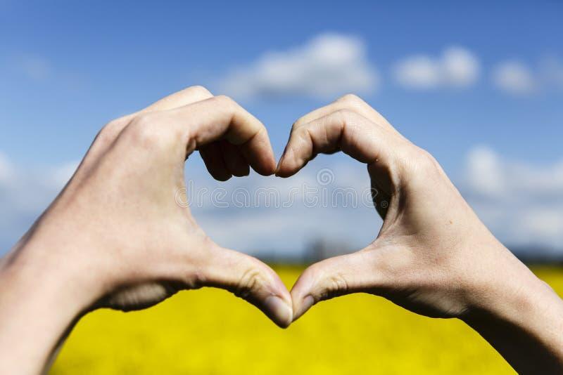 Förälskelseformhänder - hjärta på gult fält och blå himmel royaltyfri foto