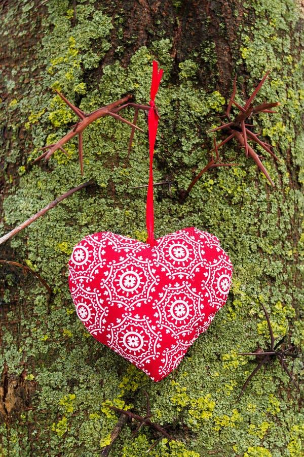 Förälskelsehjärta som hänger på ett träd Naturlig bakgrund arkivfoto