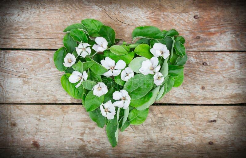 Förälskelsehjärtaform blommar och sidor på en lantlig tabell fotografering för bildbyråer