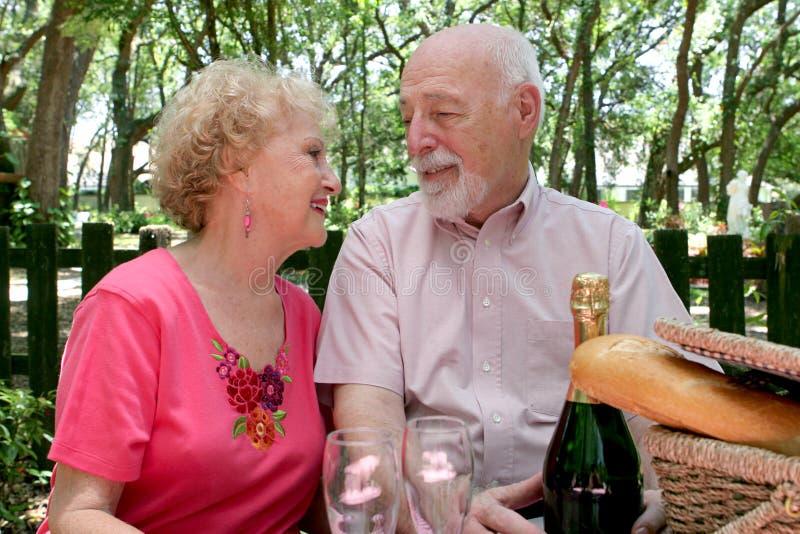 förälskelsepicknickpensionärer royaltyfri fotografi