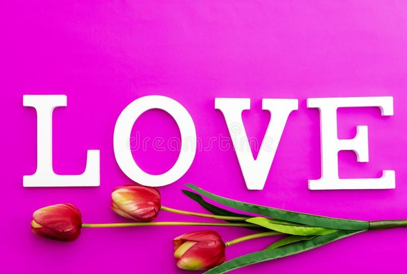 Förälskelsetext med tulpanblomman på rosa pappers- bakgrund royaltyfri bild