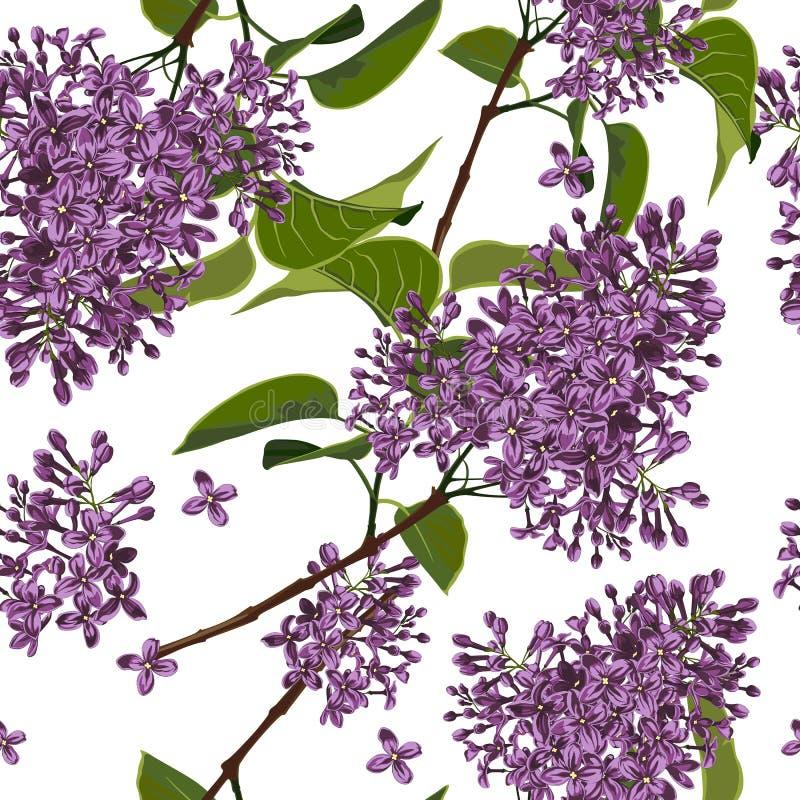 för ändlös tegelplatta för fjäder blommamodell för bakgrund seamless Härliga dekorativa naturliga växter, lila filial med sidor royaltyfri illustrationer