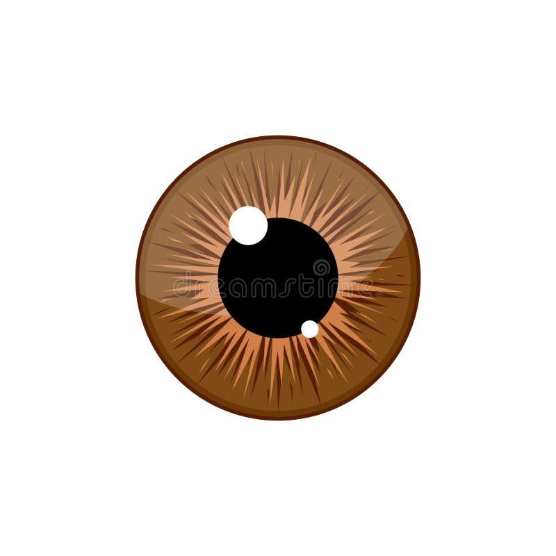 För ögonglobiris för människa som brun elev isoleras på vit bakgrund Syna royaltyfri illustrationer