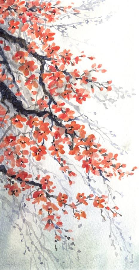 för Adobekorrigeringar hög för målning för photoshop för kvalitet för bildläsning vattenfärg mycket Filialer av körsbärsröda blom royaltyfri illustrationer