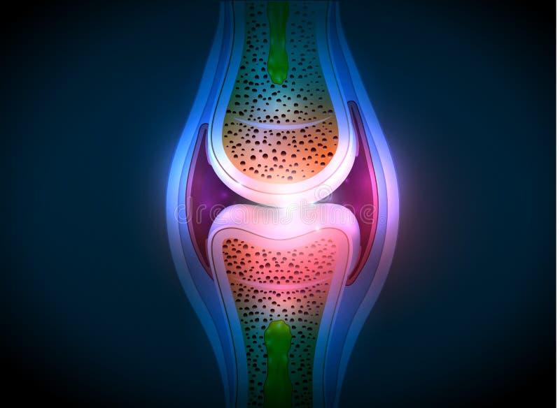 För anatomiabstrakt begrepp för Synovial skarv ljus design stock illustrationer