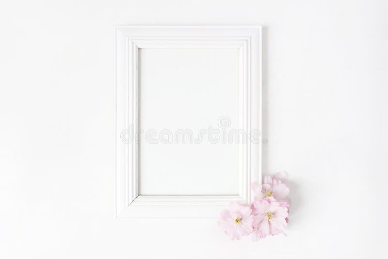 För bildram för vit tom trämodell med rosa japanska körsbärsröda blomningar som ligger på den vita tabellen Affischprodukt royaltyfri bild
