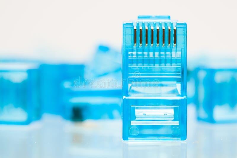 För blåttLAN för Ethernet rj45 propp royaltyfria bilder