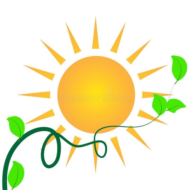 För bladID för sol grön mall för logo för kort vektor illustrationer