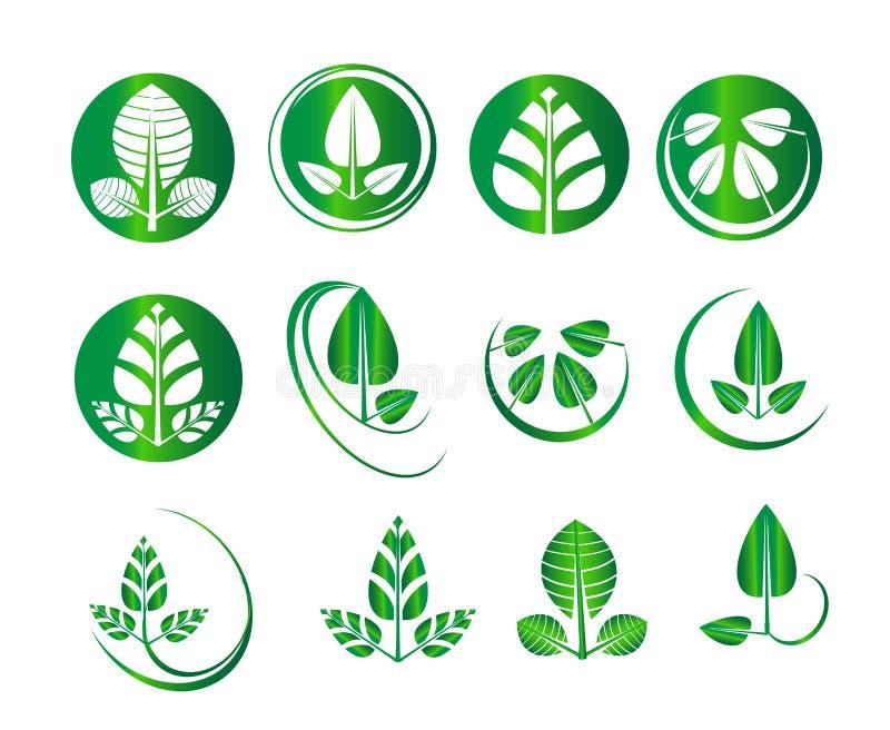 För bladuppsättning för vektor grön cirkel för runda, ekologi, natur, miljö, organiska symboler, affärslogodiagram stock illustrationer