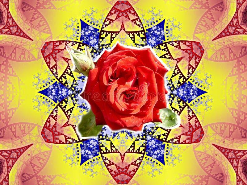 för blommaro för bakgrund härlig sten royaltyfria foton