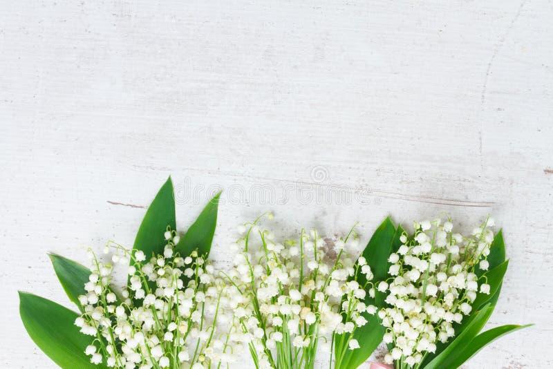 för blommor dal lilly arkivfoto