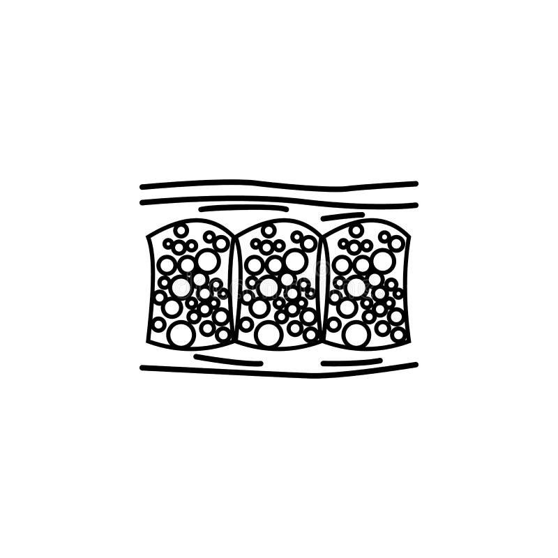 För celluliteöversikt för mänskligt organ symbol Tecknet och symboler kan användas för rengöringsduken, logoen, den mobila appen, vektor illustrationer