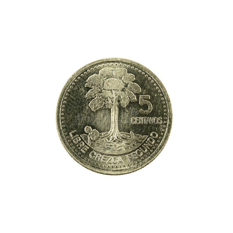 för centavomynt för 5 guatemalan avers 2000 royaltyfri bild