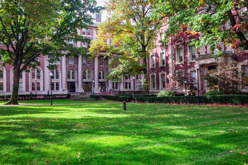 För columbia universitetuniversitetsområde för röd tegelsten byggnad i skuggor av färgrika träd royaltyfria bilder
