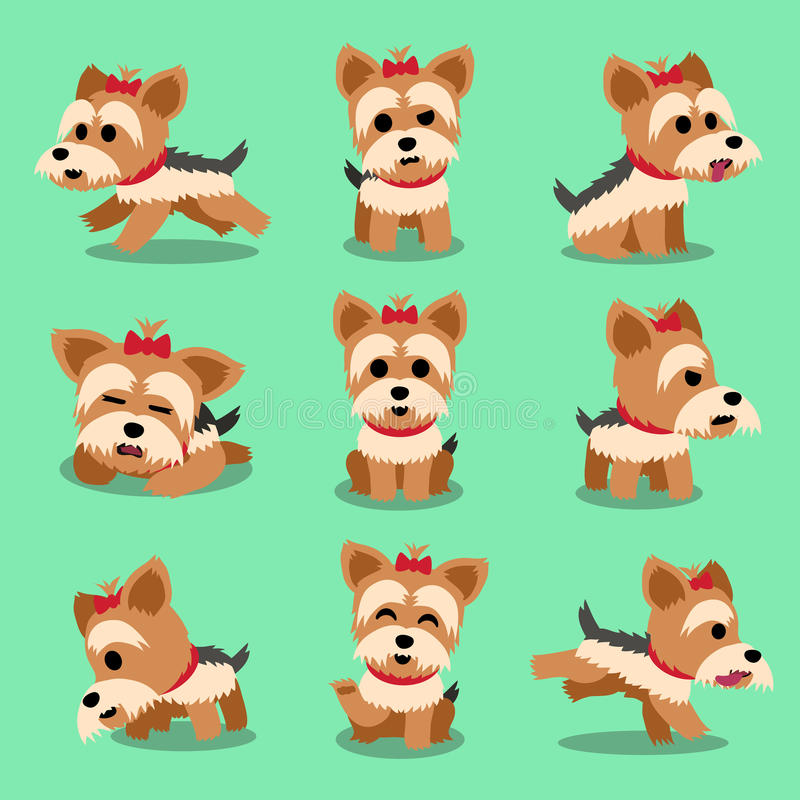För den yorkshire för tecknad filmteckenet hunden terriern poserar uppsättningen vektor illustrationer