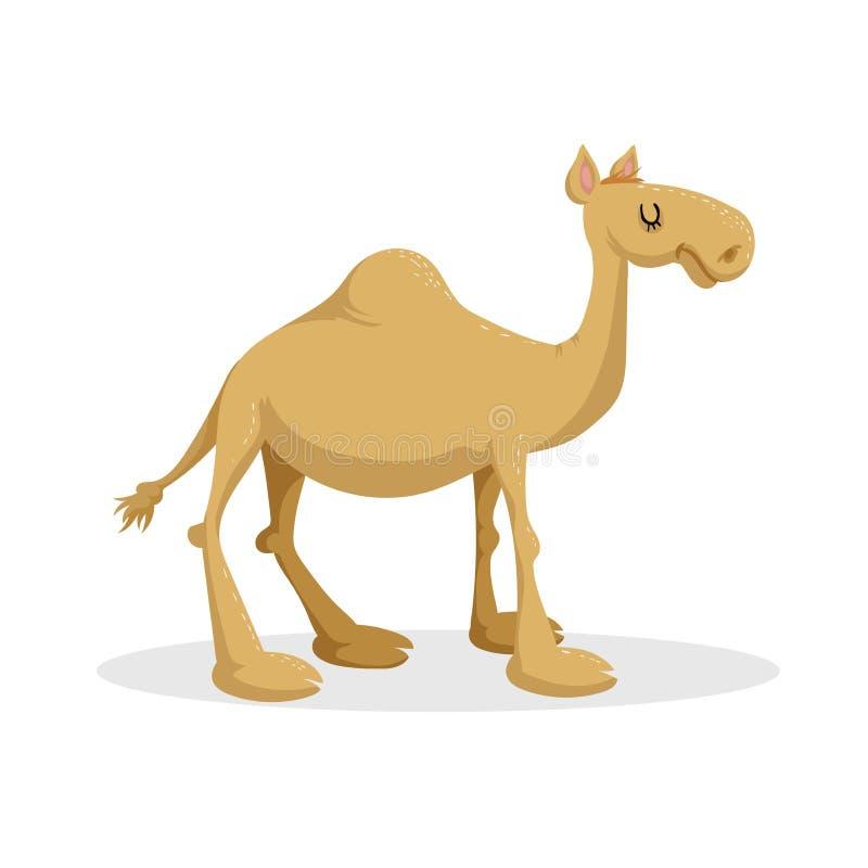 För designdromedar för tecknad film moderiktig plan kamel Stående öken stock illustrationer