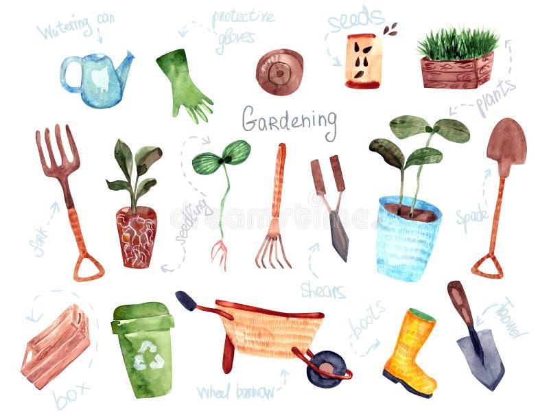 För designträdgårdsnäring för hand utdragna isolerade beståndsdelar royaltyfri illustrationer