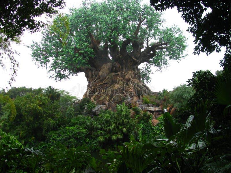 för disneyworldkungarike för 2 djur tree för livstid arkivbild