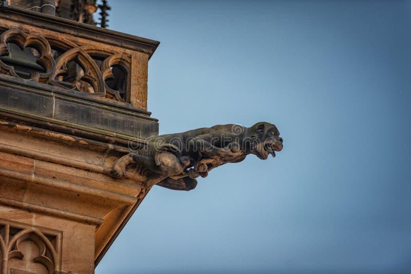 För domkyrkaPrague för St Vitus vattenkastare Tjeckien arkivfoto