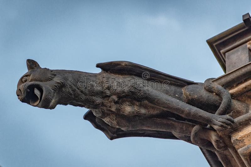 För domkyrkaPrague för St Vitus vattenkastare Tjeckien royaltyfri fotografi