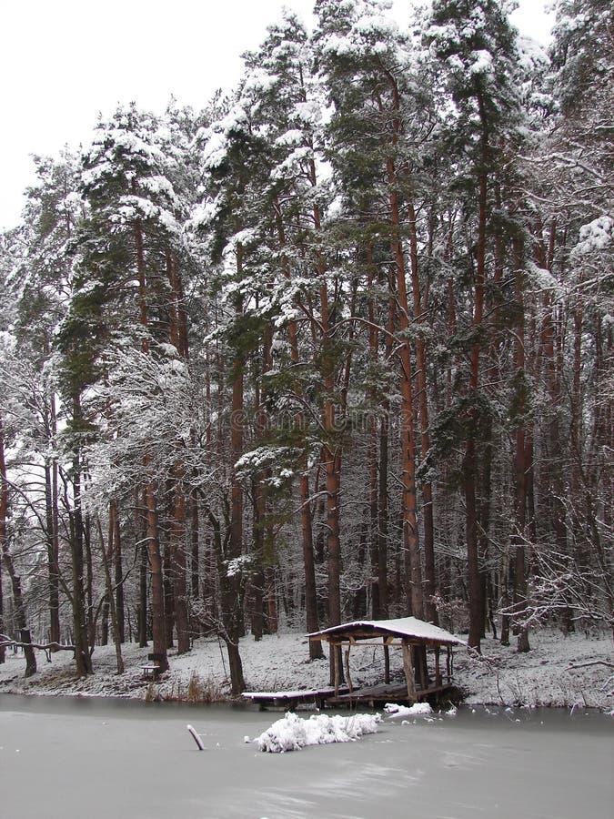 ` För ` för dröm för silver för ` för pinjeskog för vinterkustsjö som sover snö-täckte gazeboen för skönhet den ` arkivbild