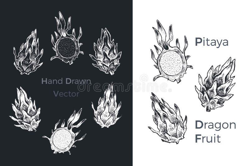 För för drakefrukt eller pitaya för hand utdragna symboler för vektor stock illustrationer