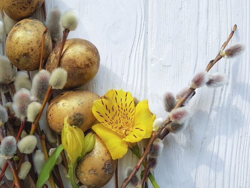 För easter för vaktelpussyägg pil filial på en vit träbakgrund för naturlig garnering, blommaalstroemeria arkivbilder
