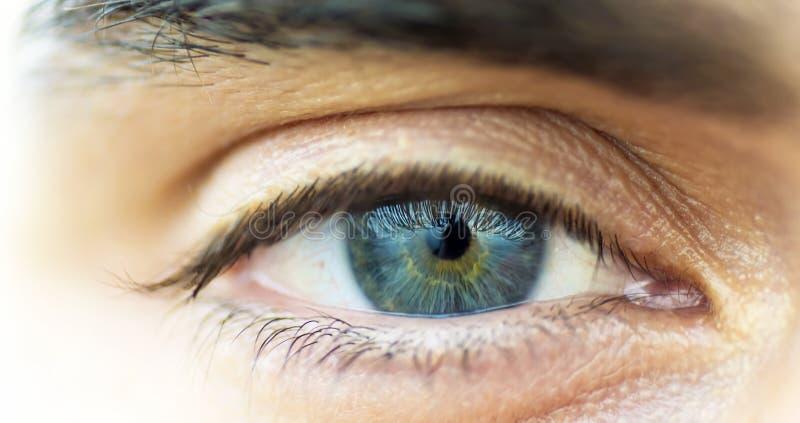 för eos-öga för kamera 20d skytte för makro mänskligt royaltyfri bild