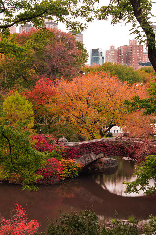 för färgfall för bro central park för gapstow royaltyfria foton