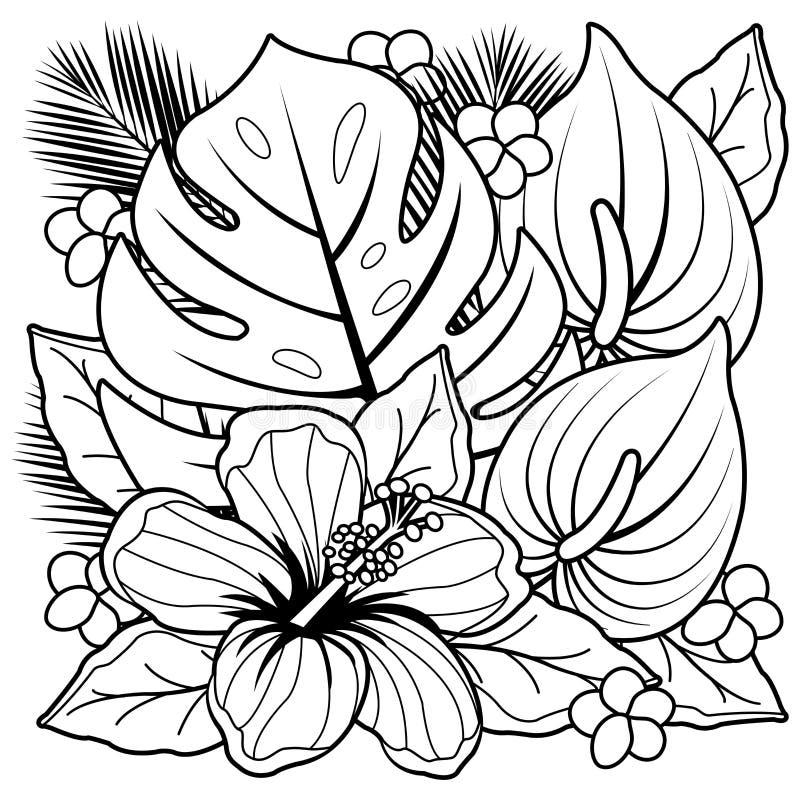 För färgläggningbok för tropiska växter och hibiskusblommasida royaltyfri illustrationer