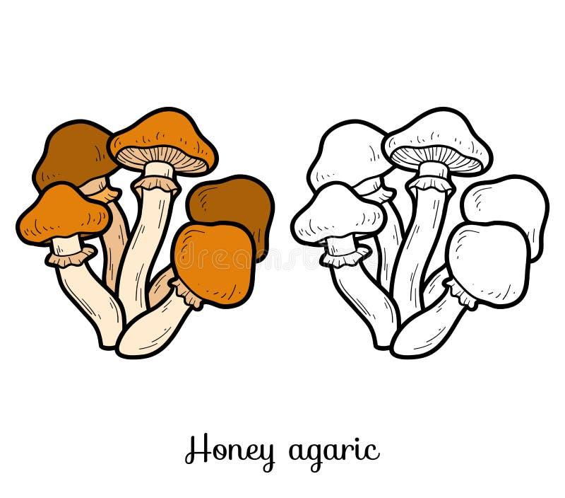 för färgläggningdiagram för bok färgrik illustration Ätliga champinjoner, honungagaric royaltyfri illustrationer