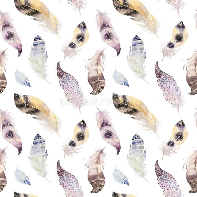 För fågelfjädrar för vattenfärg naturlig modell för boho Bohem Seamles royaltyfri illustrationer