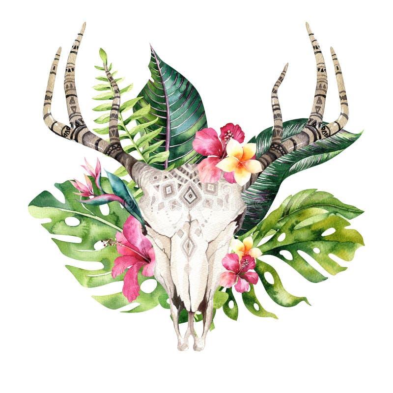För för koskalle och vändkrets för vattenfärg bohemiska palmblad Västra hjortdäggdjur Tropiska horn på kronhjort för tryck för hj stock illustrationer