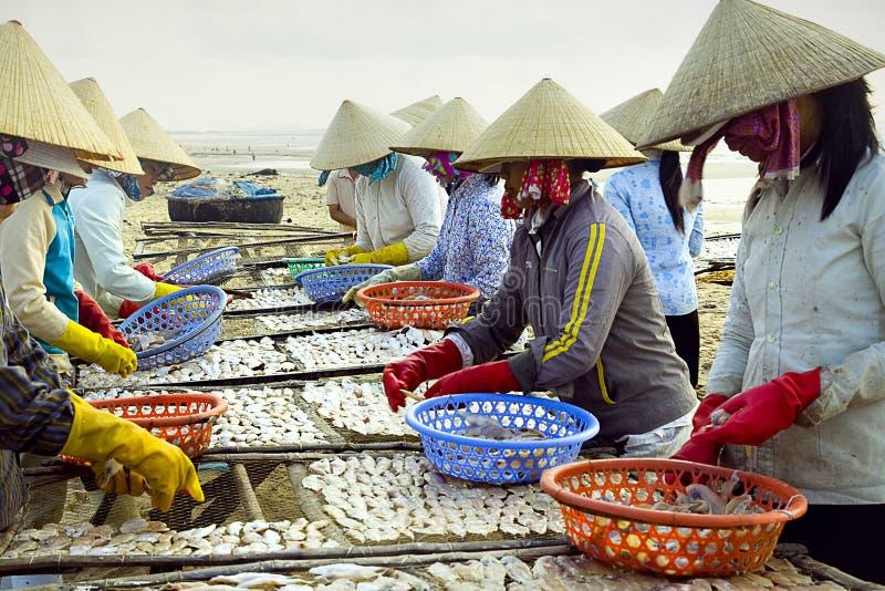 by för fiskkaliningrad koenigsberg royaltyfri foto