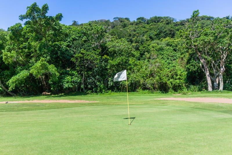 För flaggahål för golf grön reserv för natur arkivbilder