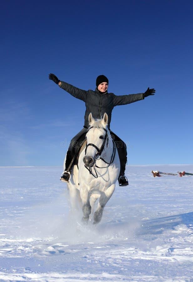 För hästryggridning för ung kvinna galopp i snön royaltyfri foto