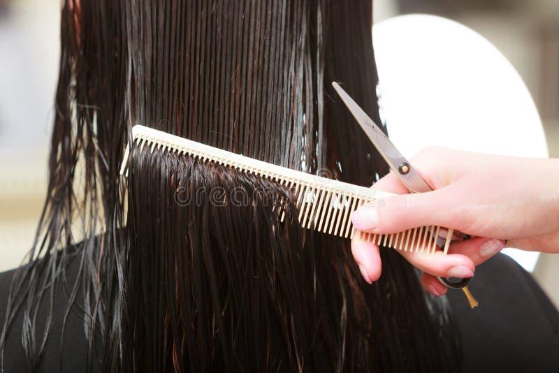 För hårkvinna för frisör bitande klient i friseringskönhetsalong arkivbilder