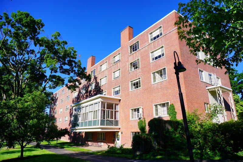 För högskolauniversitetsområde för Mt Holyoke byggnad royaltyfri fotografi