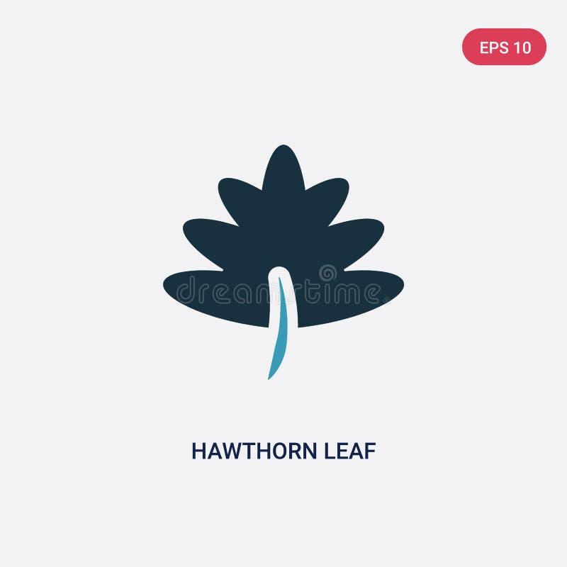 För hagtornblad för två färg symbol för vektor från naturbegrepp det isolerade blåa symbolet för tecknet för hagtornbladvektorn k stock illustrationer